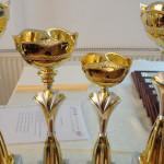 Gala sportului dâmbovițean va avea loc pe 15 decembrie
