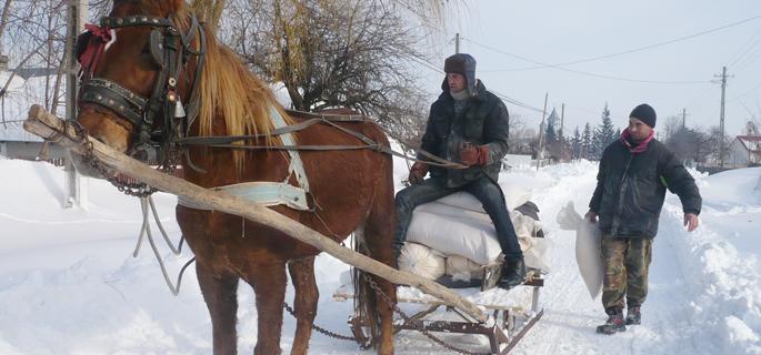 FOTO ARHIVĂ (Sursa: www.ziaruldevrancea.ro)