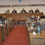 DÂMBOVIŢA: Consiliul Judeţean a pierdut terenul primit de la Guvern pe...