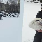 RESPECT: Pui de lebădă, salvat de pompierii argeşeni. Era prins în ghe...