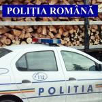 DÂMBOVIŢA: Lemne transportate fără acte, confiscate de poliţişti!