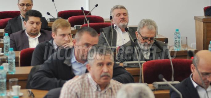 consiliul judetean 2