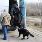 GIURGIU: Filtru pe DN5. Poliţiştii au controlat o maşină la fiecare do...