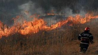 incendii-vegetatie