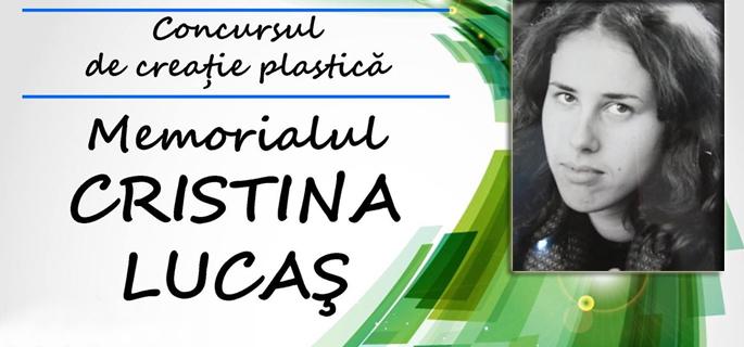 concurs arta plastica moreni