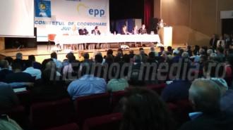 alegeri PNL