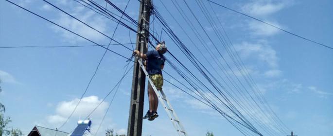 electrocutat