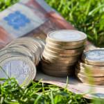APIA: Fermierii care refuză controlul în exploataţie pierd subvenţiile...
