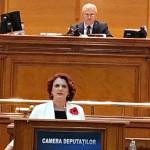 LEGE: Finanţările nerambursabile pentru românii din diaspora se vor ob...