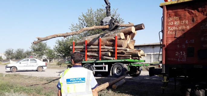 vagon lemne fara acte 1