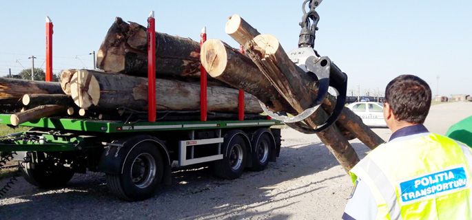 vagon lemne fara acte 2