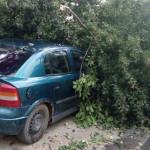 TELEORMAN: Vijelia a doborât acoperişuri şi copaci la Alexandria!