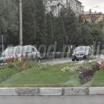TÂRGOVIŞTE: Aranjamentul floral din giratoriul IC Brătianu- Stancu Ion...
