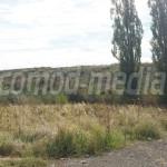 DÂMBOVIŢA: Consiliul Judeţean cumpără teren pentru o nouă celulă de de...