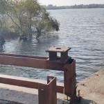 DÂMBOVIŢA: Bucureştean dat dispărut, găsit înecat la Crevedia!