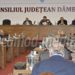 DÂMBOVIŢA: Consiliul Judeţean n-a ajuns la un acord cu proprietarii te...