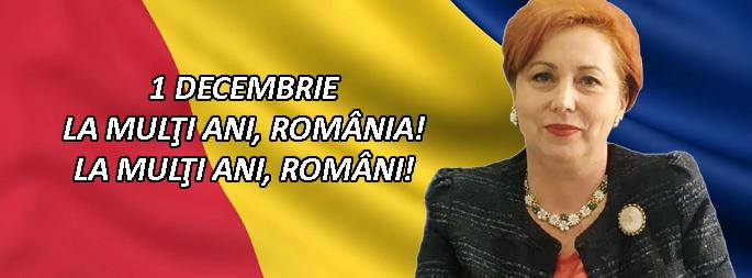 Carmen Holban - deputat PSD