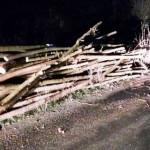 ACŢIUNE: Nu fac lemnele cât amenda! Nu transporta fără aviz şi acte de...