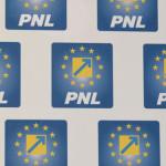 DÂMBOVIŢA: Relații, orgolii și interese au pus în impas organizația PN...