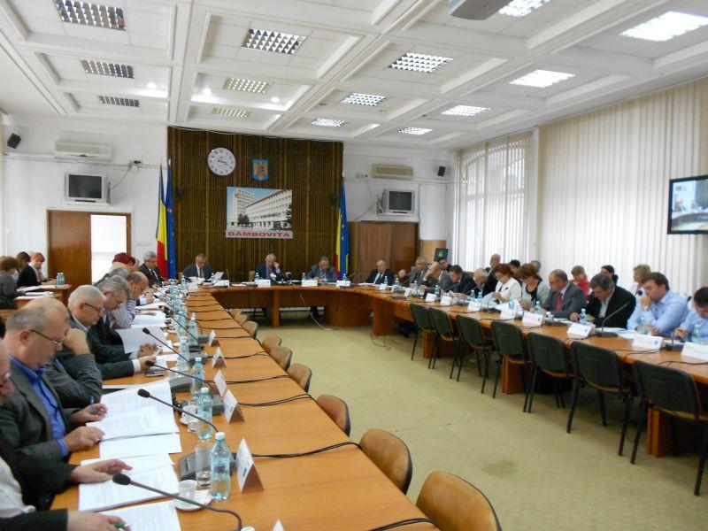 consiliul judetean sept 2013