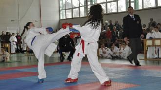 karate fieni 9