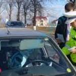 CĂLĂRAŞI: Poliţiştii au lăsat pietoni mai mulţi şoferi şi au aplicat 1...