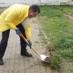DÂMBOVIŢA: Voluntariat în folosul comunităţii! Liberalii ecologizează ...
