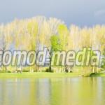DÂMBOVIŢA: Parcul Chindia, cel mai frumos loc din Târgovişte. GALERIE ...