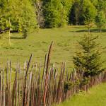 A FOST ODATĂ... Descoperă legendele Parcului Național Retezat