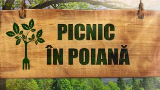 picnic in poiana
