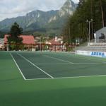 PRAHOVA: Simona Halep şi Ilie Năstase vor inaugura arena de tenis de l...