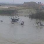 ROMÂNIA, SUB APE! Prahova, judeţul cel mai afectat de inundaţii!