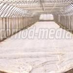 SEMNAL: Noile proceduri APIA îi tulbură pe agricultori