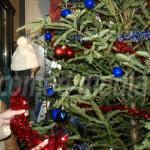 DÂMBOVIŢA: Tradiţiile de iarnă, promovate de tinerii UNPR-işti