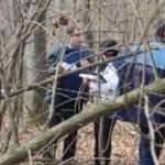 DÂMBOVIŢA: Hoţii de lemne au bătut cu bâtele pădurarul care i-a prins ...