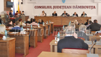 consiliul judetean dambovita 2
