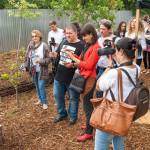 PREMIERĂ: Magazinele Kaufland România vor avea grădini pe acoperişuri ...