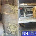 CĂLĂRAŞI: Cetăţean bulgar, prins cu tutun în valoare de peste 6,5 mili...