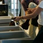 SCANDALOS: Comişar şef de la Crimă Organizată, prins furând în aeropor...